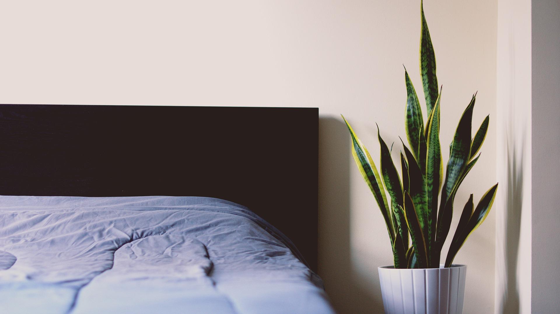 Mooie bedden » Diverse stijlen en soorten » Woning & Slaapkamer meubels